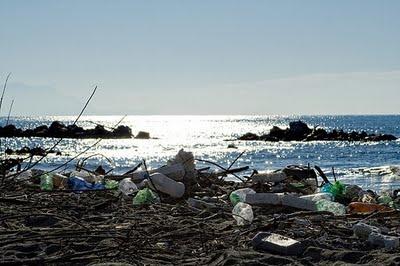 Approvata risoluzione PD: agevolazioni a pescatori per la pulizia dell'Adriatico