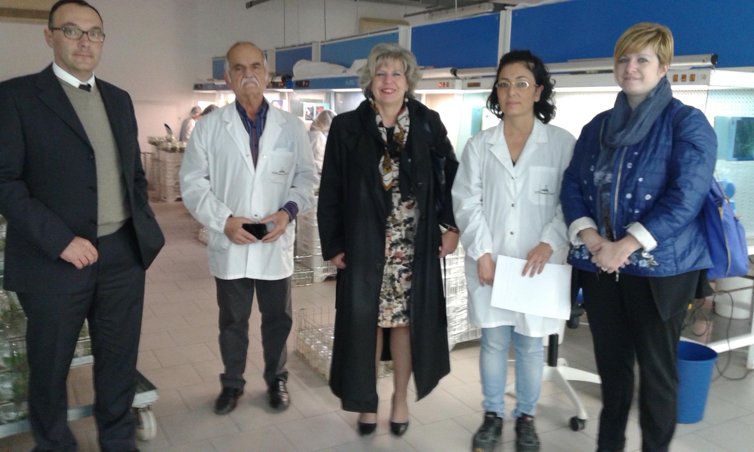 """Visita alla Vitroplant di Cesena. Montalti: """"Nessun caso di Xylella in Emilia-Romagna, le barriere commerciali che subiscono le nostre aziende sono infondate"""""""