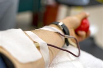 """Question time di Zappaterra: """"Continuiamo a valorizzare la cultura della donazione del sangue"""""""