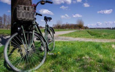 """Audizione legge sulla ciclabilità. Bagnari: """"Un tassello importante per costruire una società regionale moderna e sostenibile"""""""