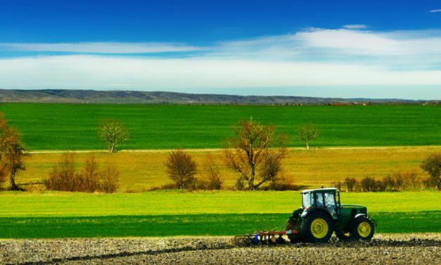 """Agrea. Bagnari: """"Fare attenzione alle problematiche legate alla richiesta di contributi delle aziende agricole"""""""