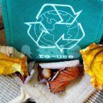 """Centri del Riuso. Sabattini: """"Un tassello fondamentale per la riduzione dei rifiuti"""""""