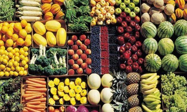 """Programma regionale per l'orientamento ai consumi e l'educazione alimentare. Lori: """"Sostegno a fattorie didattiche e alla produzione di qualità del territorio"""""""