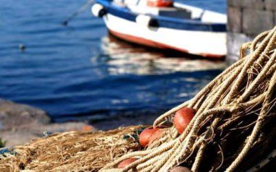 """PESCA   Rossi, Bagnari, Bessi, Calvano, Montalti, Rontini e Zappaterra: """"Continueremo a sostenere un settore di cruciale importanza per i nostri territori"""""""