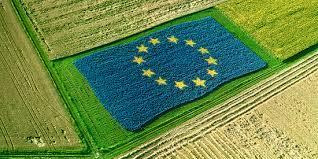 """Politiche Agricole Europee. Bessi e Caliandro: """"No al calo ingiustificato delle risorse per l'Italia, la Regione al fianco degli agricoltori"""""""