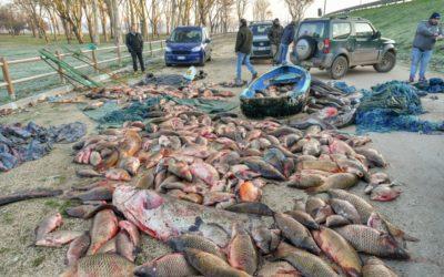 """Calvano: """"Si faccia chiarezza sul recupero del pescato dei bracconieri"""""""