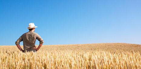 Nadia Rossi: 'Continuano gli incentivi dalla Regione per giovani agricoltori: c'è il bando'