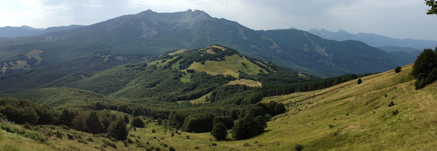 """Agroalimentare. PD-Sel: """"Valorizzare prodotti di montagna e chiarire applicazione regolamenti UE"""""""