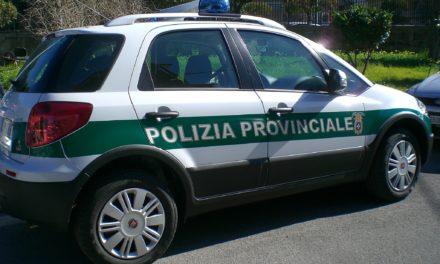 Polizia Provinciale: la Regione stanzia 3,8 milioni per garantirne il funzionamento