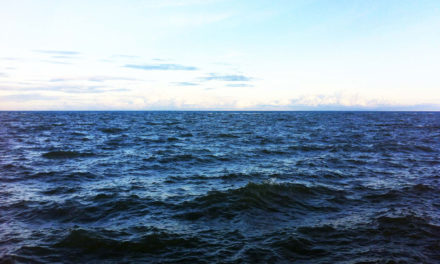 Ambiente. Bessi: 'La scienza smonta le fake news. L'Adriatico è un mare pulito'