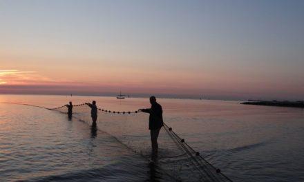 Pesca. Paolo Calvano e Lia Montalti saranno a Cesenatico per la mobilitazione
