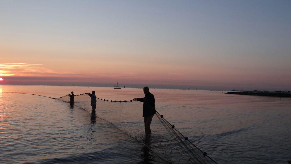 """Pesca. Interrogazione di Montalti e Calvano: """"Ci si impegni col governo e le altre regioni, anche in sede di conferenza stato-regione, per dare risposta alle problematiche sollevate oggi dalle marinerie"""""""