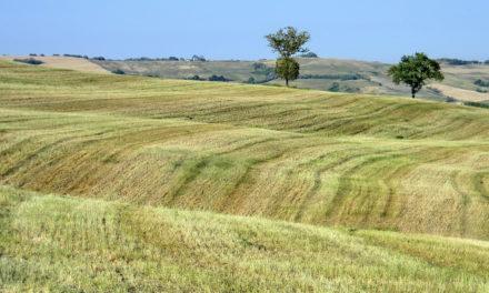 Turismo. Nasce la Destinazione Romagna