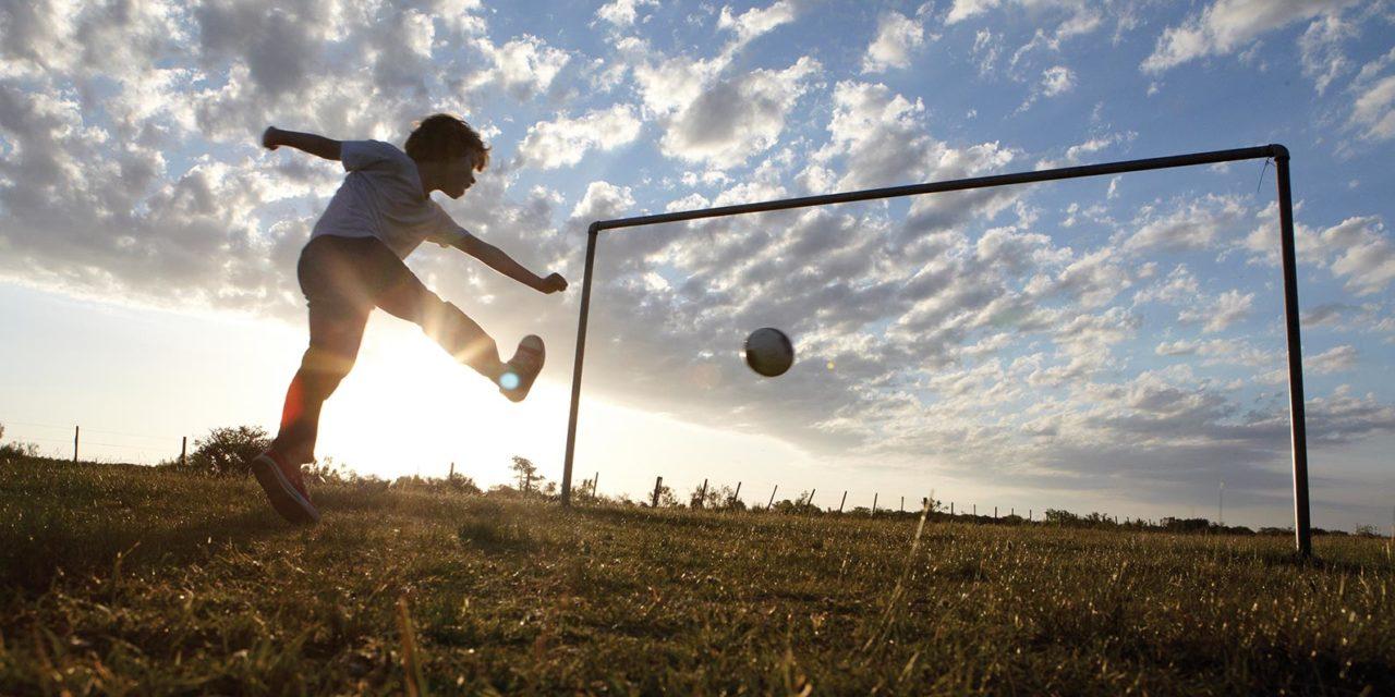 Nuova legge regionale sullo sport: Calvano nominato relatore