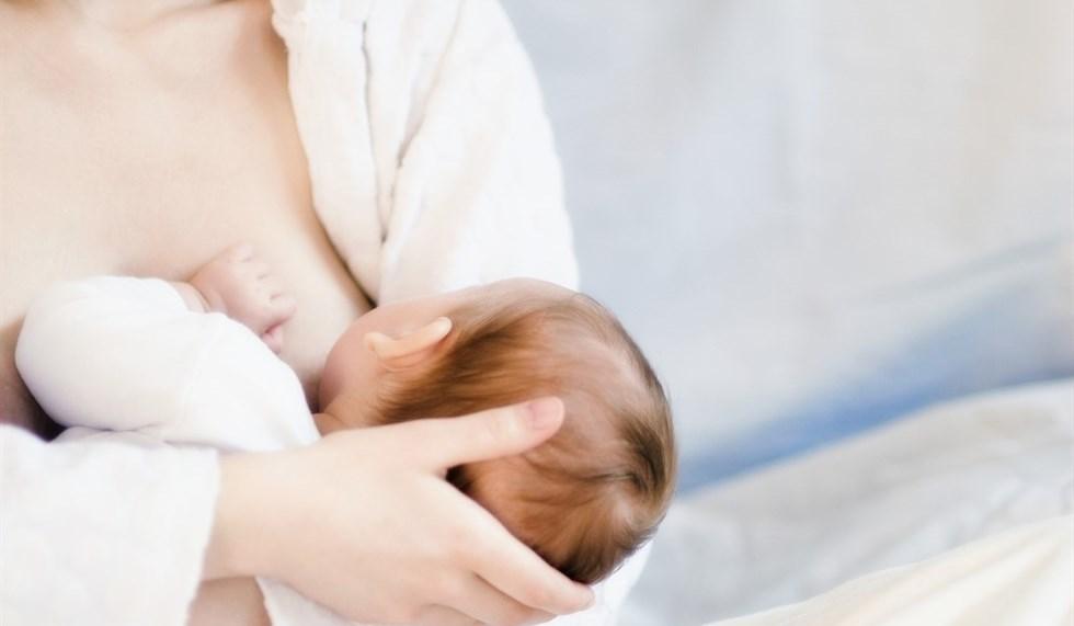 """Allattamento in consiglio comunale. Marchetti e Mori: """"Solidarietà alla consigliera denigrata. Valorizziamo la maternità sempre"""""""