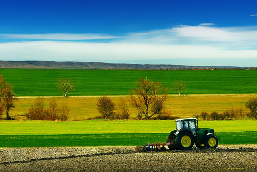"""Agricoltura, approvata risoluzione PD. Bagnari e Serri: """"Servono politiche di sistema e di lungo periodo per il settore ortofrutticolo"""""""