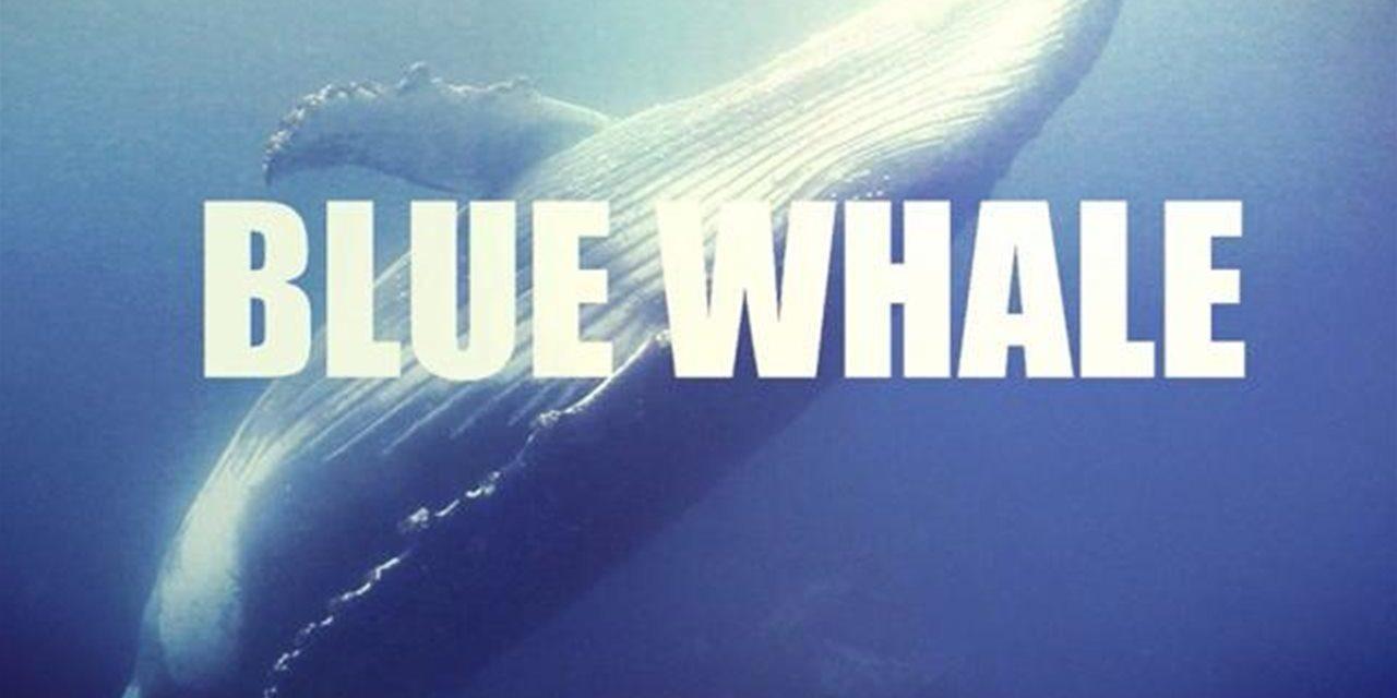 """Blue Whale. Marchetti: """"Attenzione e monitoraggio ai nuovi fenomeni del web"""""""