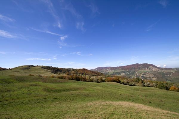 Poggio Tre Vescovi: consiglieri regionali e parlamentari Pd di Rimini e Cesena ribadiscono la loro contrarietà al parco eolico