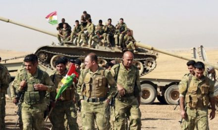 Terrorismo. Il Pd con i Curdi: fermare repressione irachena e cercare soluzione per la stabilità
