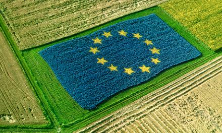 """Politiche agricole europee. Bessi: """"Non si giustifica un calo così marcato di risorse europee all'Italia. Fare subito chiarezza con la Commissione europea"""""""