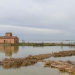 Delta del Po. Marcella Zappaterra chiede maggiore chiarezza per il Parco