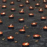 In Emilia-Romagna il Pd chiede di rafforzare i progetti dedicati alla Memoria del Novecento nelle scuole