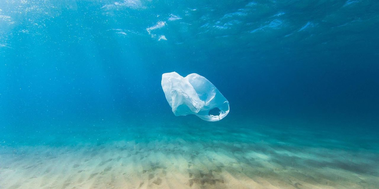 Inquinamento marino da plastiche, Pruccoli interroga la Giunta