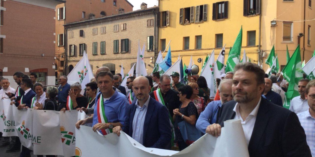"""Paolo Calvano: """"L'Emilia-Romagna ha pronto un piano di azione a contrasto della cimice asiatica"""". Il 26 settembre tavolo tecnico tra Ministro Bellanova e Assessorato"""