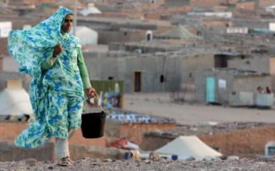 Popolo Saharawi, si rinnova l'impegno dell'Assemblea Legislativa